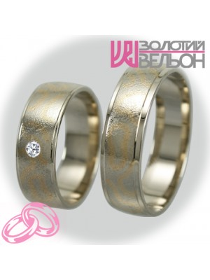 Couple of wedding rings V033